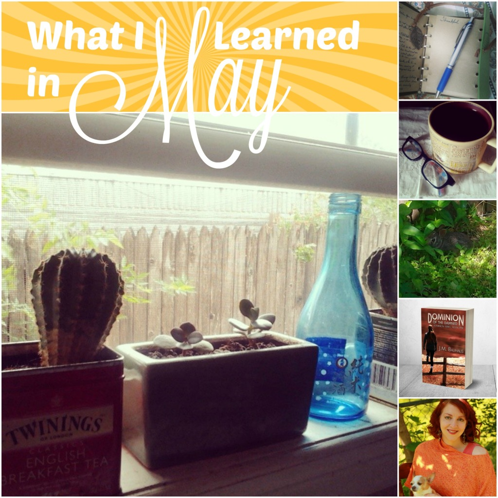 what-i-learned-in-May